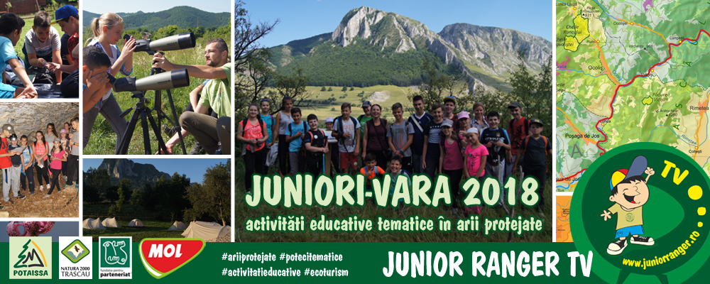 header_web_juniorivara2018-full